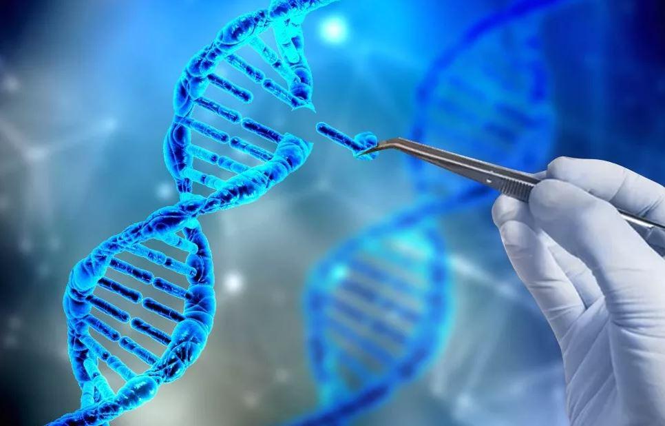 CRISPR and gene therapy